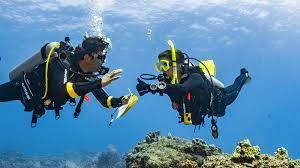 Dive Theory Online