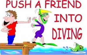 Push A Friend Into Diving